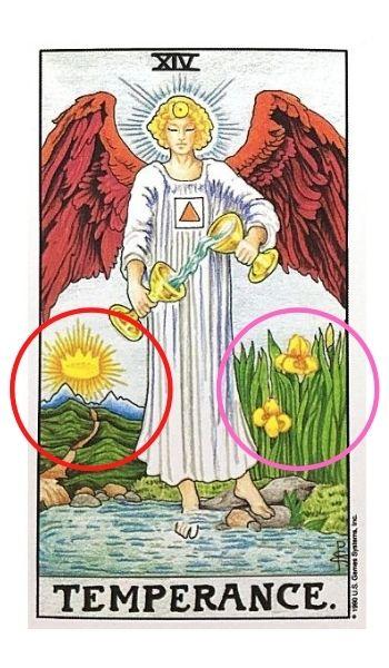 【節制】アイリスの花と太陽に続く道