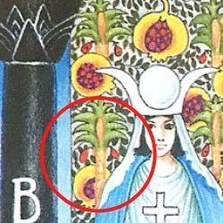 2女教皇 男性器 女性器