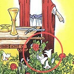 1魔術師 ザ・マジシャン 赤の薔薇と白の百合 タロット